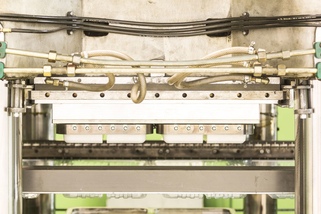 Empresa termoconformado alimentario en producción